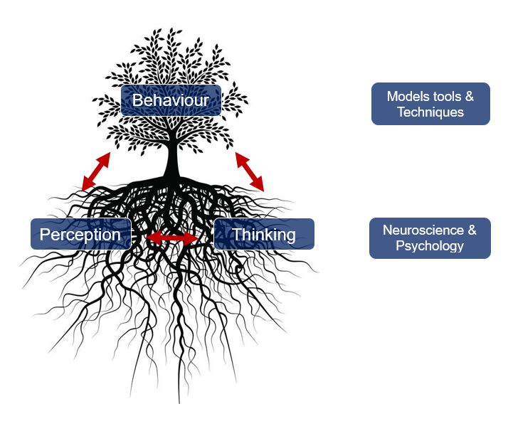 behaviour tree